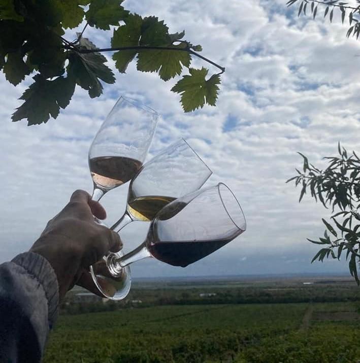 VINURILE DE PIETROASELE, PROMOVATE DUPĂ REȚETA SPANIOLILOR. Parteneriat cu Regiunea Rioja pentru dezvoltarea podgoriilor buzoiene